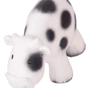 Mucca - Tikiri