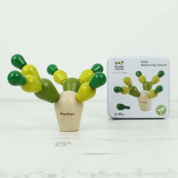 Mini cactus - Plantoys